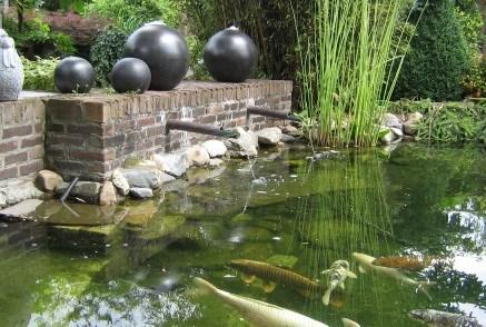 Vijver ontwerpen doorloop dan dit stappenplan ecolan for Vissen vijver